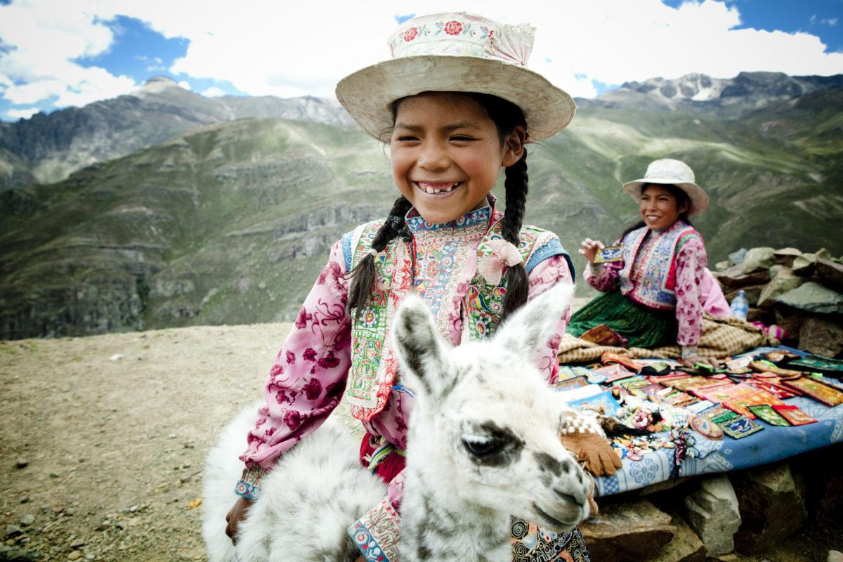 Find you Alpaka in Peru / Bild: PromPeru