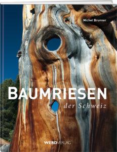 Cover Baumriesen in der Schweiz / Werd Verlag