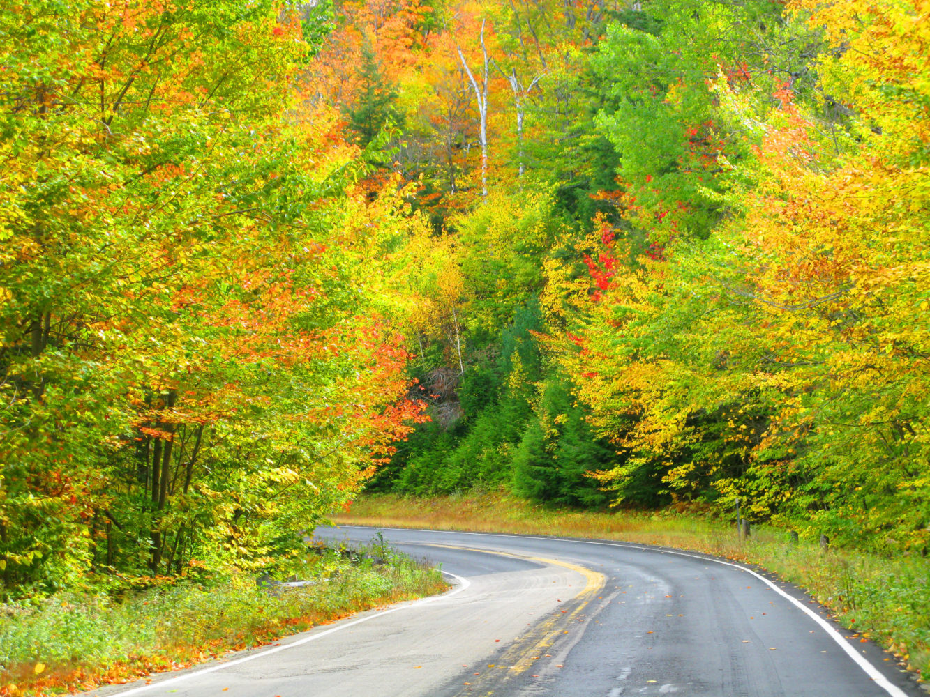 Kancamagus Highway  / Bild: Ellen Edersheim für New Hampshire Division of Travel and Tourism Development